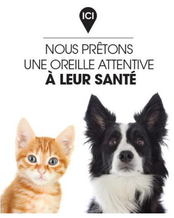 Dossier d animation veterinaire mai 2017 pharmacie56 gmail com gmail