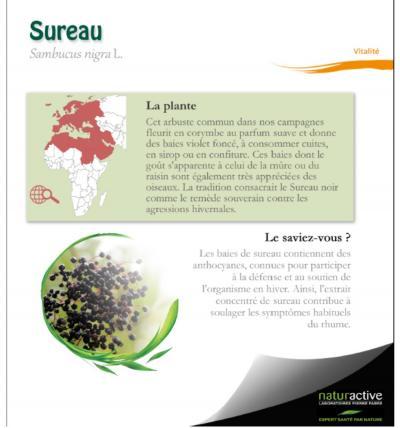 Naturactive fiche plante sureau septembre